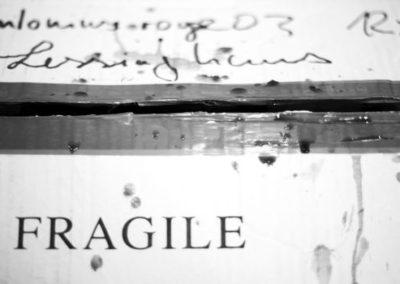 lessinghaus2006_00292